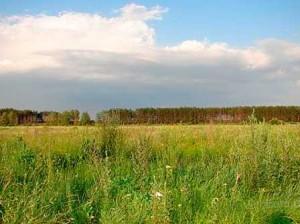 продам участок земли в Рожнах под Киевом