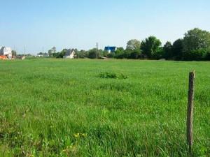 Продам земельный участок под киевом, Займище