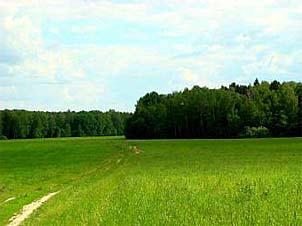 Стоимость земельных участков
